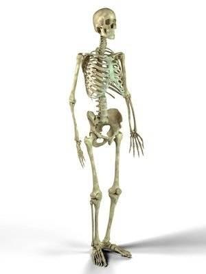 МРТ сустава: особенности процедуры
